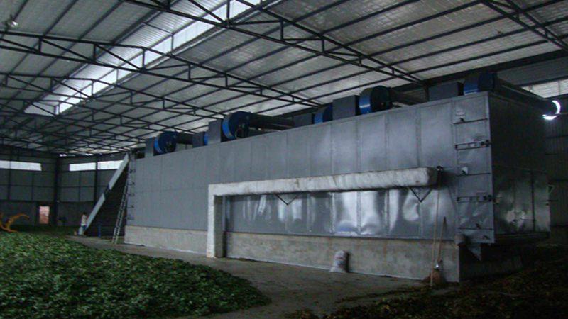 WDH-2大型中药材蔬菜烘干机(银杏叶)